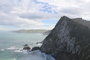 Southern Scenic Route Nugget Point Lookout 7