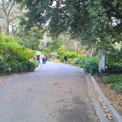 Running in Melbourne