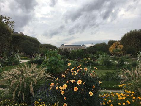 Botanical Garden Paris