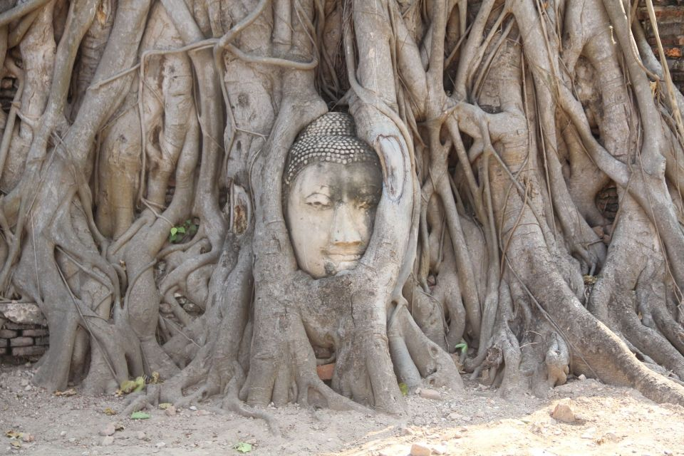 Ayutthaya Wat Maha That Buddas Thema