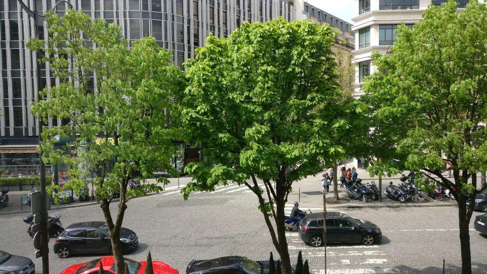Hotel Barriere Le Fouquet Paris Junior Suite View