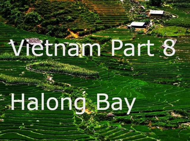 Vietnam Part 8- The end of the trip.