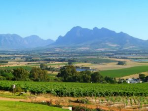 South African Country Scene