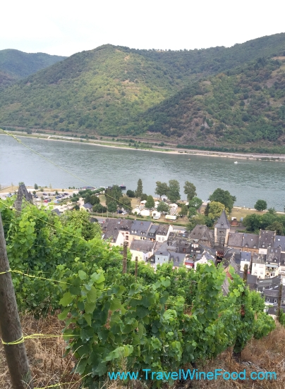 Rhine Valley Vineyards Germany Europe