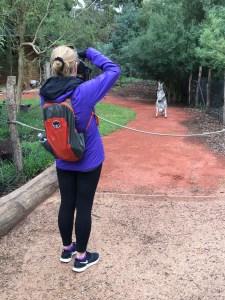 Healesville Sanctuary ~ Melbourne, Australia