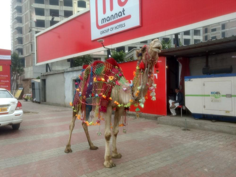 Mannat Hotel, Delhi Pilani Highway, India