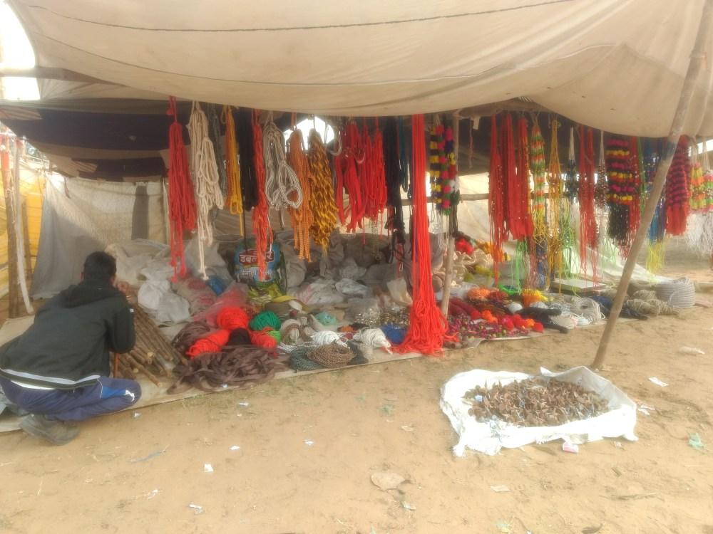 Camel Fair, Pilani, Rajasthan, India