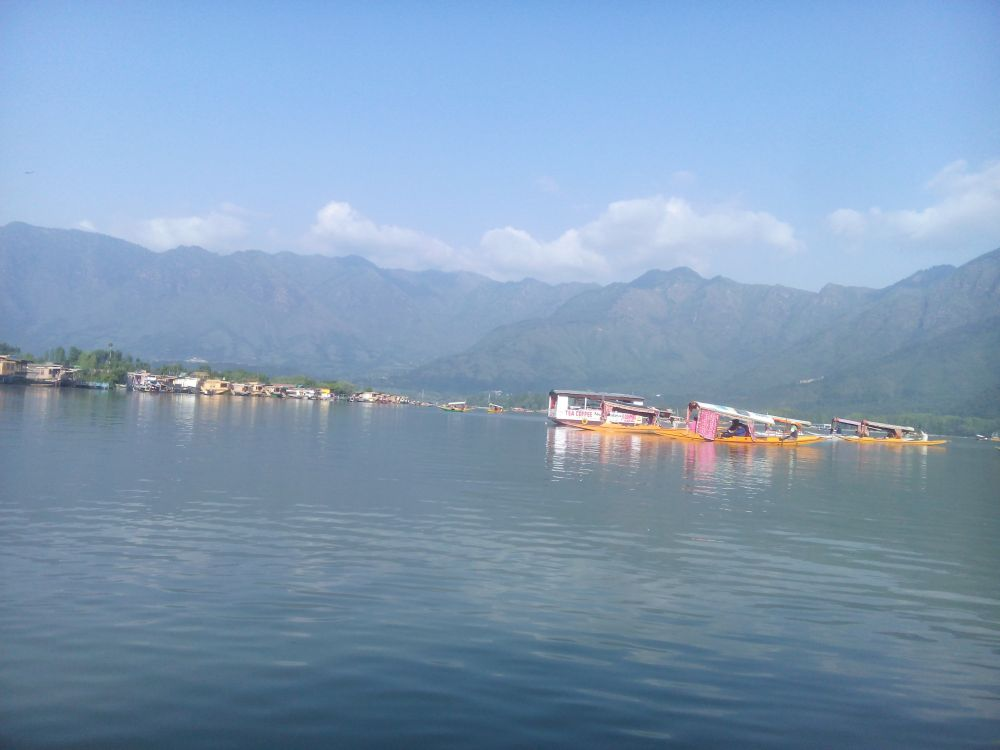 Dal Lake, Srinagar, Kashmir, India
