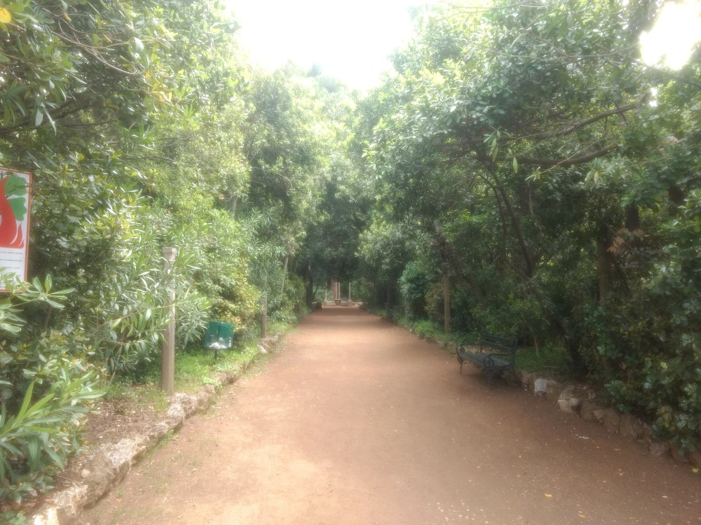 Botanical Garden in Lopud Island, Elaphiti Islands, Dubrovnik, Croatia