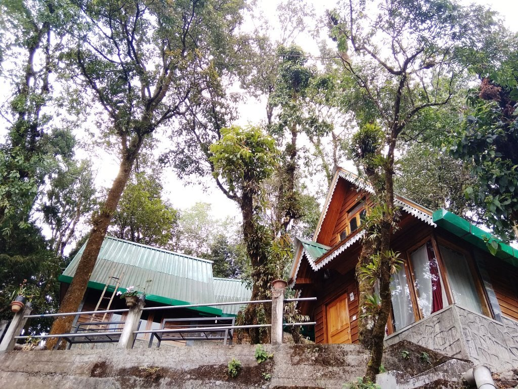 Pinewood Log Huts,Kurseong