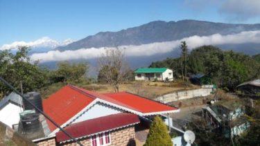 Peshok Tea Garden,Darjeeling