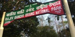orang-national-park