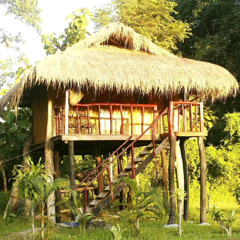 nameri Jungle Camp