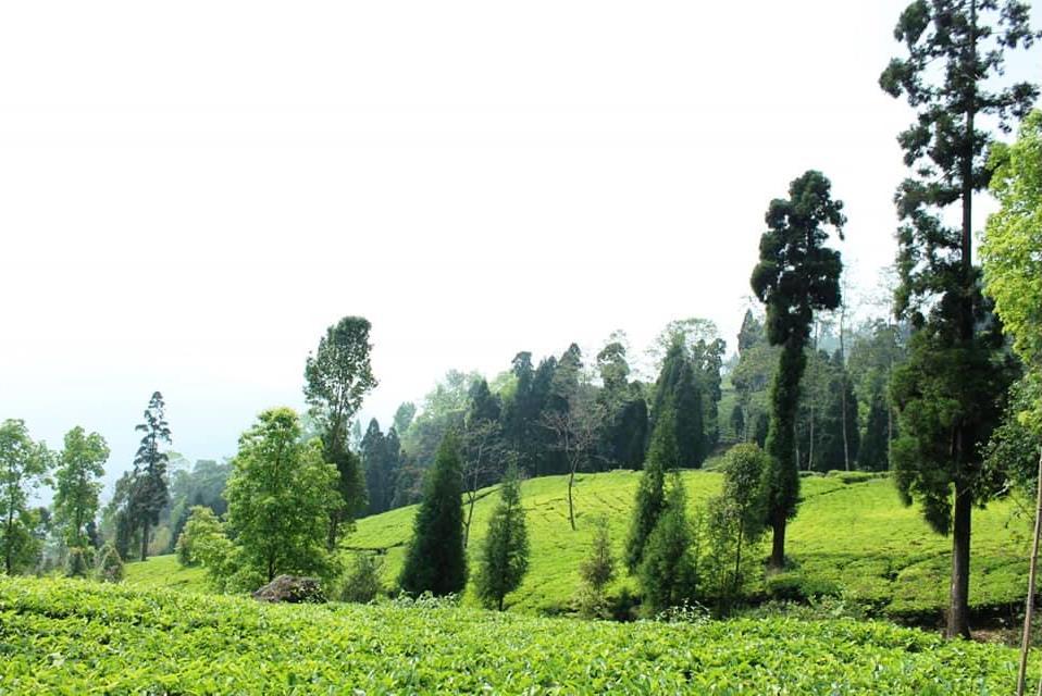 Rampuria Village