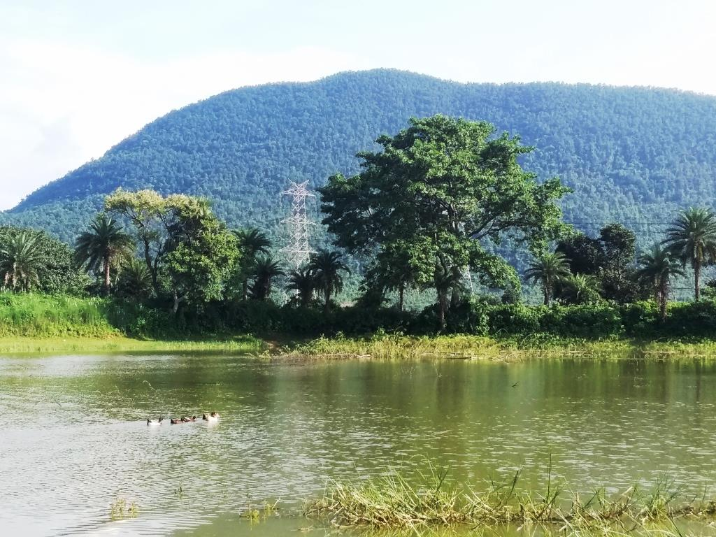 Biharinath Hills,Bankura