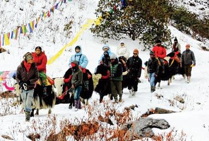 extended-darjeeling-gangtok-tour-6305-1.jpg