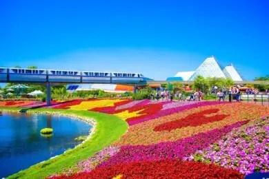 Disney parks, Epcot fowers
