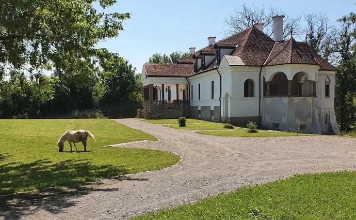 Castelul contelui Kalnoki din Micloșoara