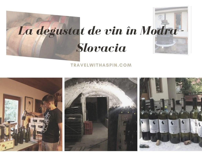 La degustare de vin in Modra, Slovacia