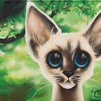 Gothenburg Cat