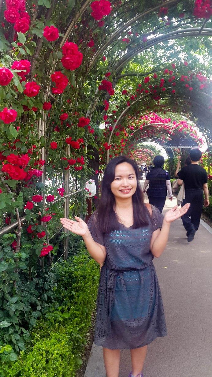 Rose Festival-21