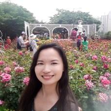 Rose Festival-4