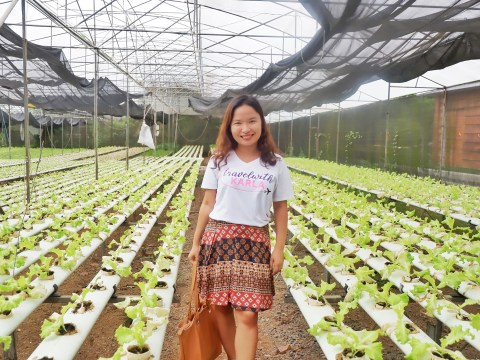 6 Reasons to Visit Yoki's Farm