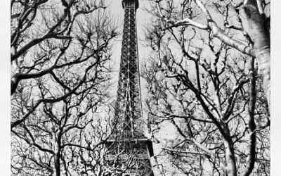 Instagramming Paris