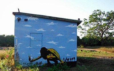 From tree-top towers to African street art