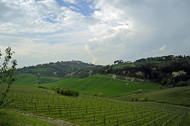 Wine tasting in Tuscany, Italy