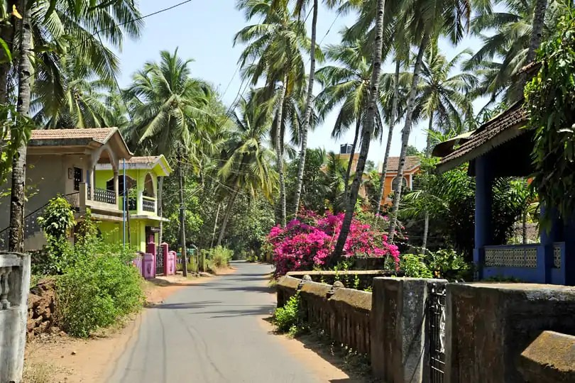 Typical road in South Goa, India
