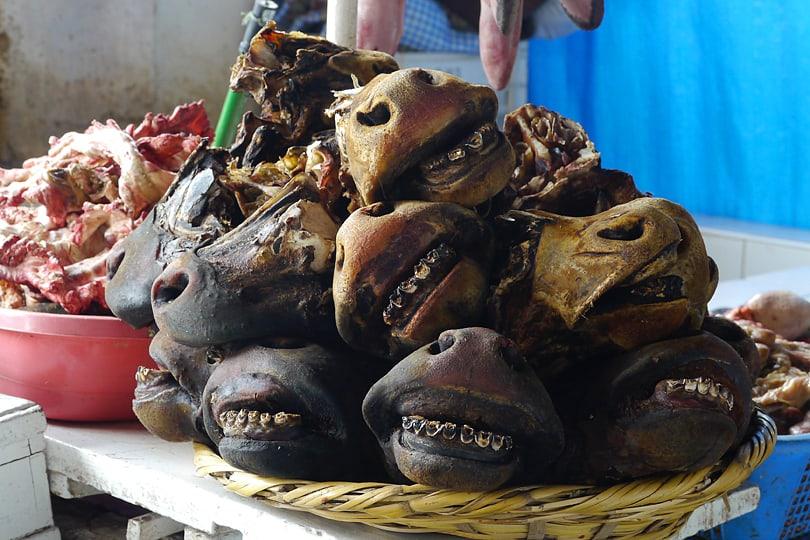 A plate of smiling llama and goat heads, Mercado Central de San Pedro, Cuzco, Peru