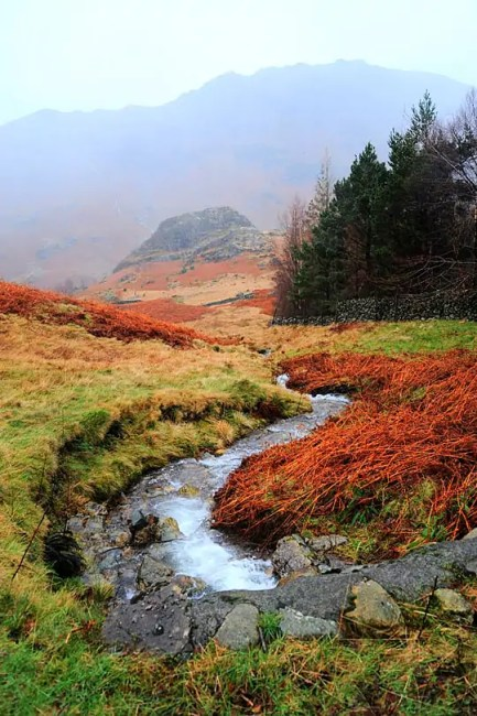 Langdale Valley, Cumbria