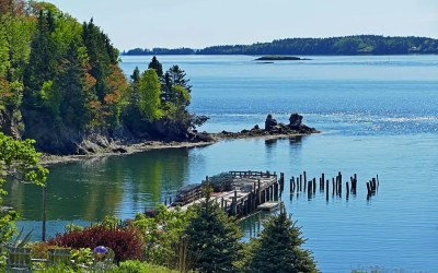 Passamaquoddy Bay – 3 fabulous day trips from Saint John