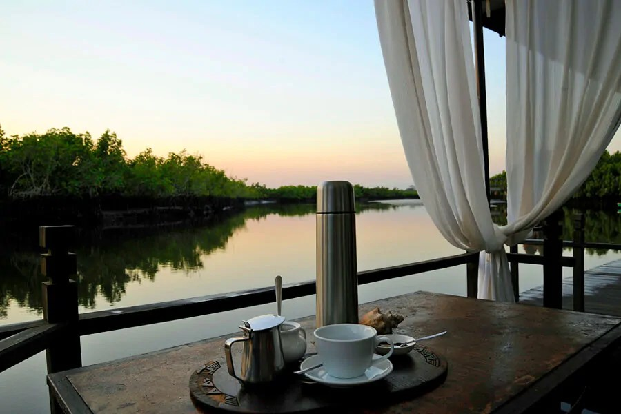 Early morning coffee at Mandina Lodges, The Gambia