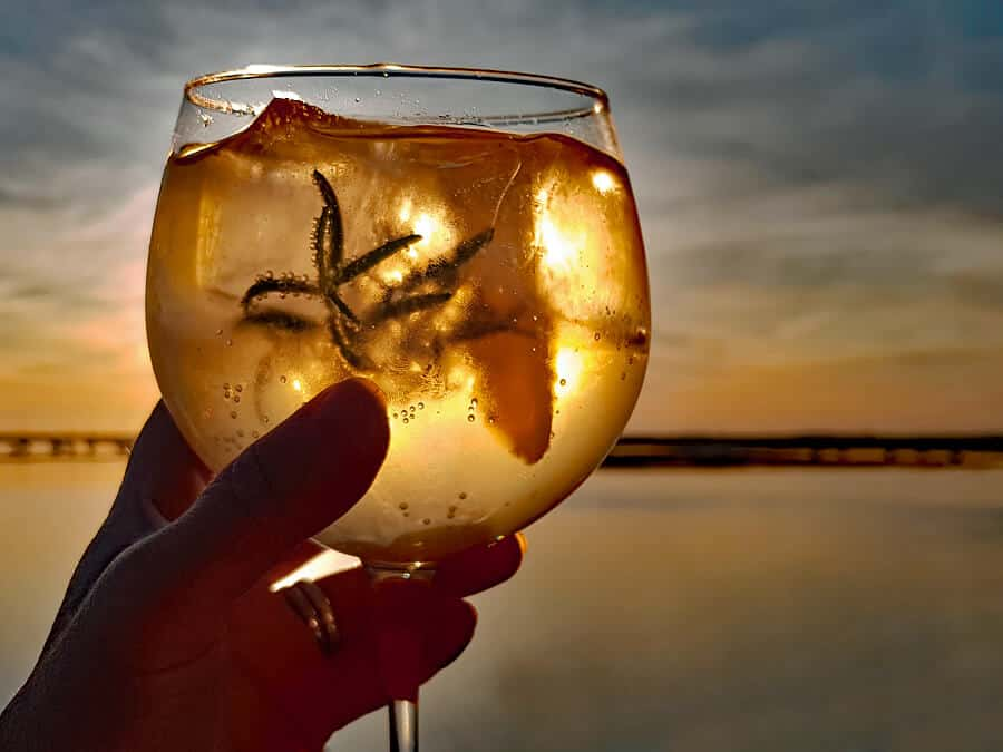Porto tónico | How to make the perfect white port cocktail
