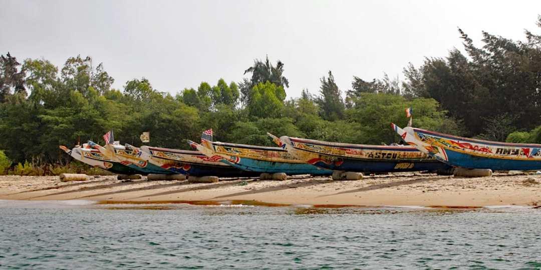Pirogues, Senegalese fishing boats