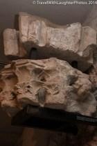 St. Pierre Archeology-0274