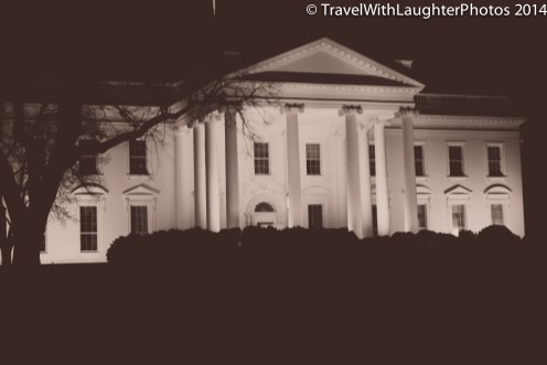 Washington DC March 2014-0158