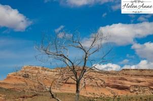 Colorado May 2015-4903-9