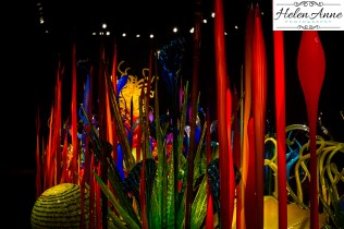 chihuly-seattle-2382-35
