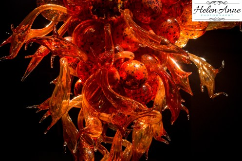 chihuly-seattle-2422-55