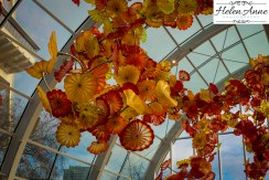 chihuly-seattle-2452-73