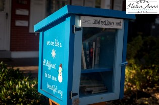 Little Free Library!