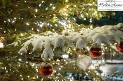 doylestown-christmas-7180