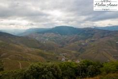 Quinta Carvalhas-0980