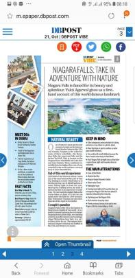 Niagara Falls write up