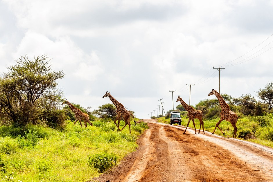 Interesting Places To Visit In Kenya – A Complete Kenya Travel Guide