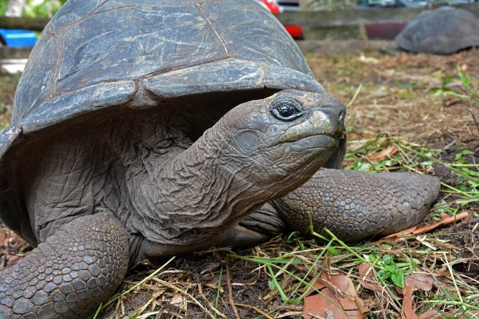 Seychelles Itinerary - holidays in Seychelles