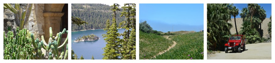 Nature verdoyante et désert en Californie